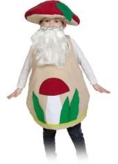 костюм старичка-лесовичка