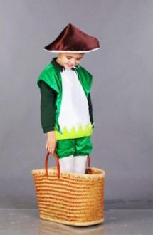 выступление в костюме грибочка