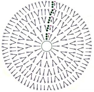 схема шапочки-осповы