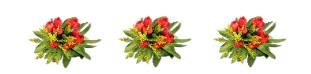Картинка букетов цветов