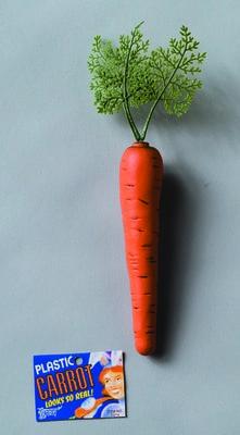 Фото Морковь для кролика пластиковая Forum