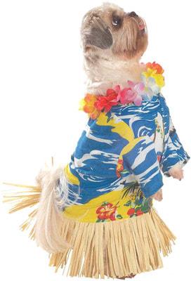 Фото Костюм для собаки в гавайском стиле