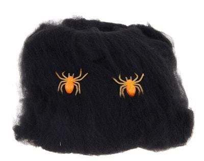 Фото Черная паутина с двумя пауками
