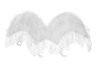 Фото Крылья для ангела белые