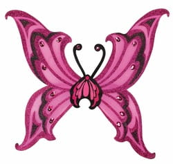 Фото Розовые крылья бабочки