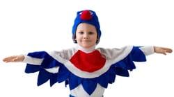 Фото Костюм Снегирь в шапке детский