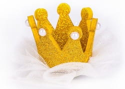 Фото Мини-корона Королева детская