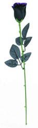 Фото Чёрная роза