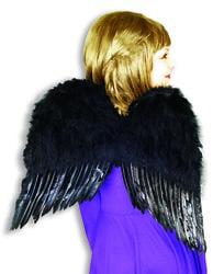 Фото Крылья ангела черные