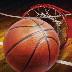 Фото Набор салфеток Баскетбол 33 см (16 шт) Forum