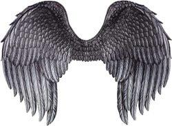 Фото Крылья темного ангела взрослые Forum