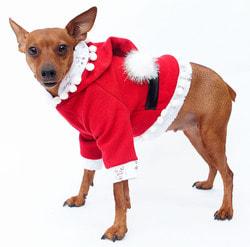 Фото Костюм Батик Санта для собаки