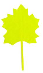 Фото Осенний листок кленовый желтый