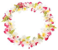 Фото Гавайское ожерелье Ромашки бело-розовое
