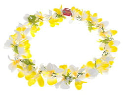 Фото Гавайское ожерелье Ромашки бело-желтое