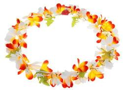 Фото Гавайское ожерелье Лепестки