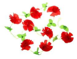 Фото Гавайская гирлянда Цветы красная