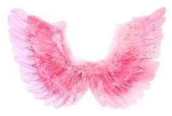 Фото Крылья ангела розовые с блестками