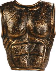 Фото Римские доспехи на грудь и на спину