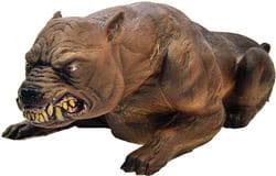 Фото Бешеная собака