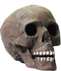 Фото Декорация для Хэллоуина Череп со светящимися глазами