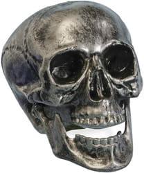 Фото Серебристый череп