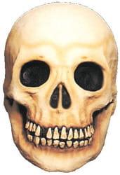 Фото Череп-гигант с выбитым зубом