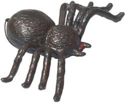 Фото Пластиковый паук