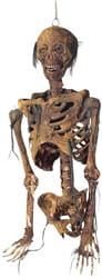 Фото Подвесной торс скелета