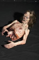 Фото Расчлененный зомби
