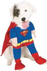 Фото Костюм для собаки Супермен