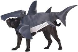 Фото Костюм для собаки Акула