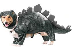 Фото Костюм для собаки Динозавр
