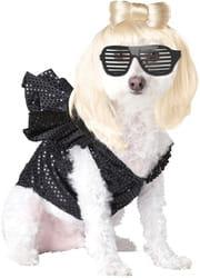 Фото Костюм для собаки Леди Гага