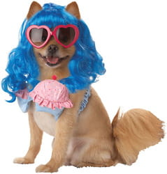 Фото Костюм для собаки Мальвина-сладкоежка