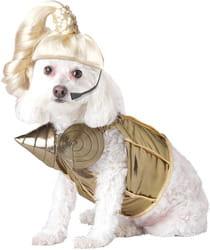 Фото Костюм для собаки Поп-звезда