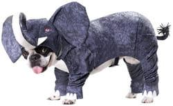 Фото Костюм для собаки Слон