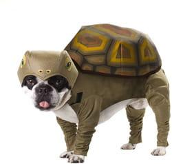 Фото Костюм для собаки Черепаха