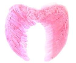 Фото Крылья ангела розовые