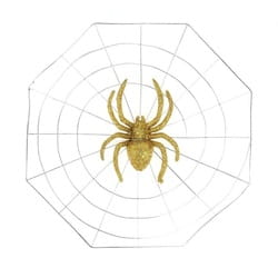 Фото Паутина большой золотой паук