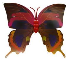Фото Крылья для бабочки