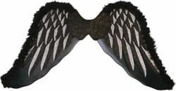 Фото Черные крылья Падшего ангела (маленькие)